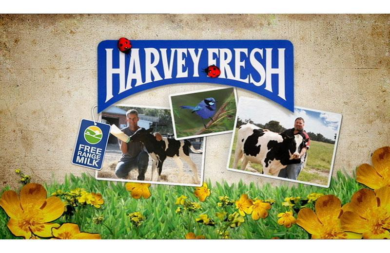 Harvey Fresh